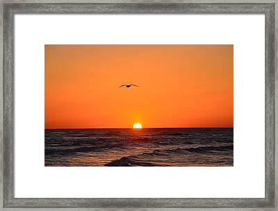 Navarre Beach Sunrise Waves And Bird Framed Print