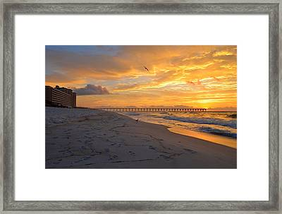 Navarre Pier And Navarre Beach Skyline At Sunrise With Gulls Framed Print