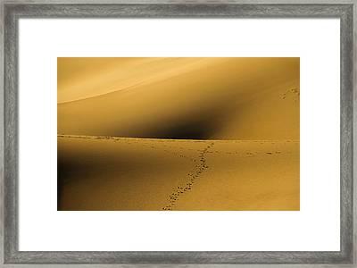 Navel Of The Dunes Framed Print