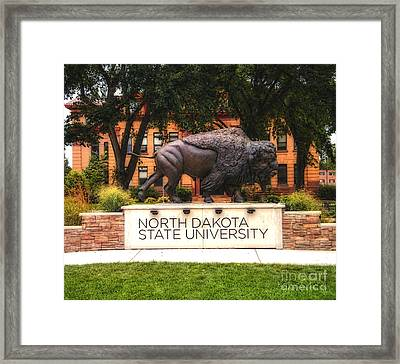 Framed Print featuring the photograph Ndsu Bison by Trey Foerster