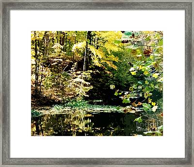 Neal's Pond Framed Print