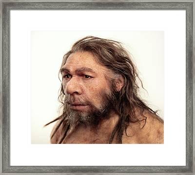 Neanderthal Model Framed Print
