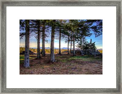 Near And Far Framed Print by Joe  Martin