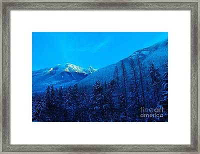 Near Fernie British Columbia  Framed Print