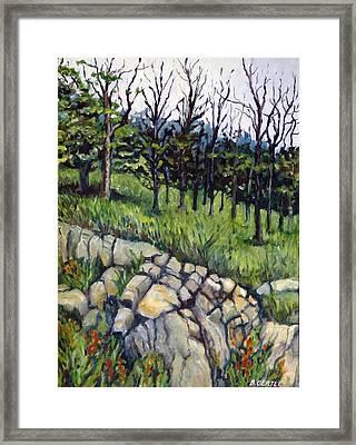 Near Three Rivers Framed Print