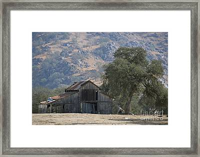 Framed Print featuring the photograph Nearly Gone by Debby Pueschel
