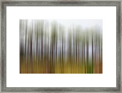 Nearly Spring Framed Print by Jan Amiss Photography