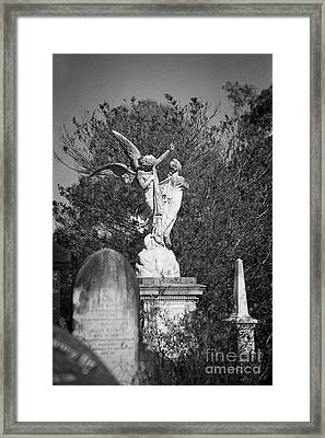 Necropolis 01 Framed Print by Colin and Linda McKie