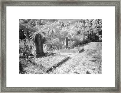 Necropolis 14 Framed Print by Colin and Linda McKie