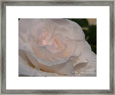 Nectar Of Innocence Framed Print