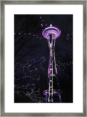 Needle In Purple Framed Print