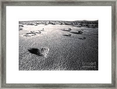 Needles Desert Framed Print by Gregory Dyer