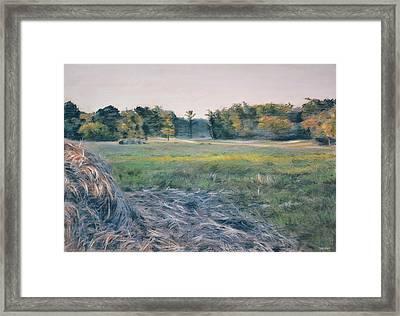 Needlestack Framed Print