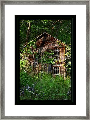 Needs Lawncare Framed Print by John Stephens