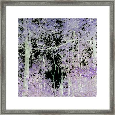 Framed Print featuring the photograph Negascape by Thomasina Durkay