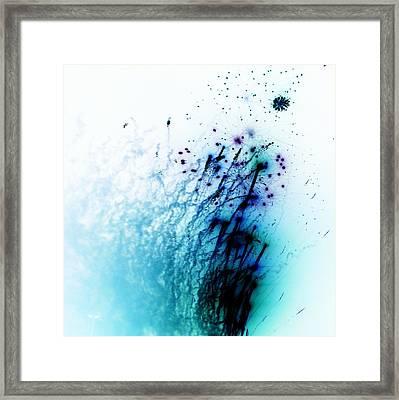 Negative Fireworks Framed Print