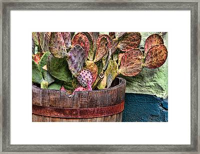 Framed Print featuring the photograph Neglect by Beverly Parks