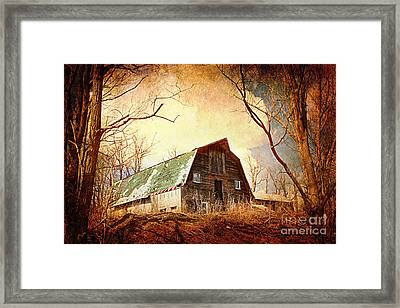 Neglected Framed Print by A New Focus Photography