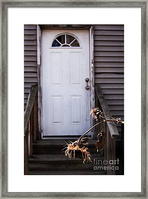 Neglected Framed Print by Margie Hurwich