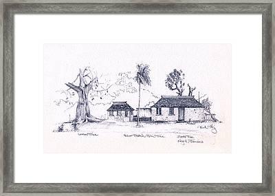 Negril Trees Framed Print