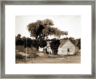 Negro Cabin And Oaks, Florida, Jackson, William Henry Framed Print by Litz Collection