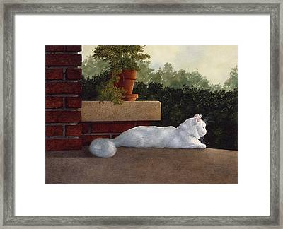 Neighborhood Watch Framed Print by Tom Wooldridge