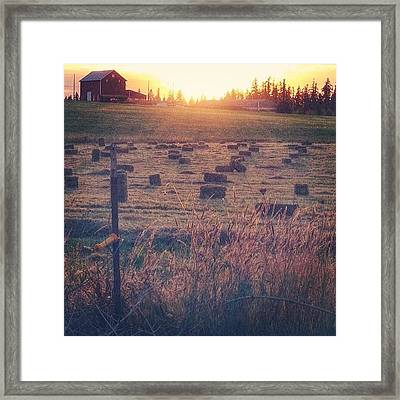 Neighboring Farm At Sunset...have A Framed Print by Blenda Studio