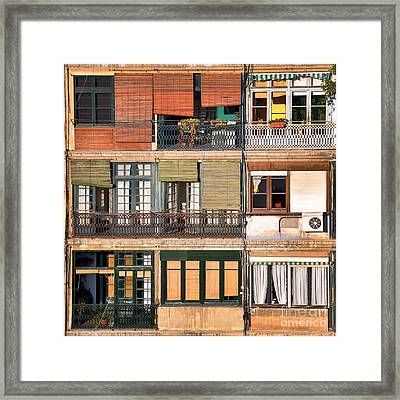 Neighbours Framed Print by Delphimages Photo Creations