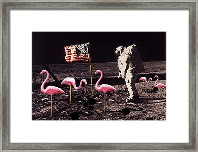 Neil Armstrong And Flamingos On The Moon Framed Print by Tony Rubino