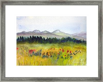 Nek Mountains And Meadows Framed Print