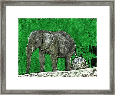 Nelly The Elephant Framed Print
