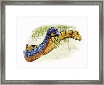 Nemegtosaurus Dinosaurs Framed Print by Deagostini/uig