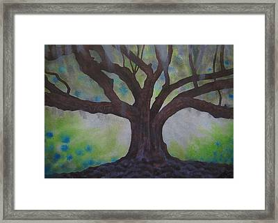 Nemeton Iv Or Southern Live Oak Framed Print