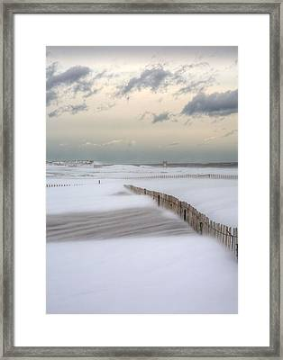 Nemo Framed Print by JC Findley
