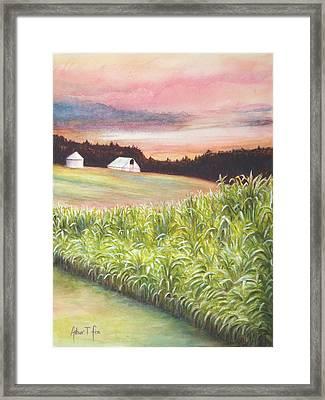 Neola Corn 2 Framed Print