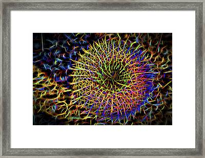 Neon Barrel Cactus Framed Print