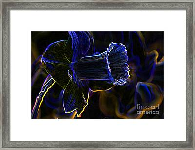 Neon Flowers Framed Print by Charles Dobbs