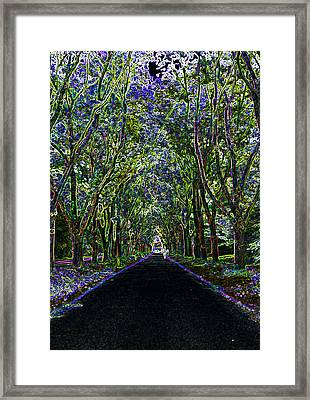 Neon Forest Framed Print by Tine Nordbred