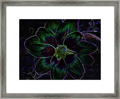 Neon Glow Framed Print by Aimee L Maher Photography and Art Visit ALMGallerydotcom