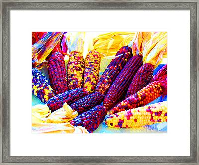 Neon Indian Corn Framed Print by Tina M Wenger