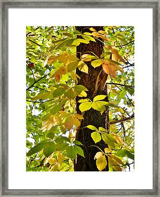 Neon Leaves Framed Print