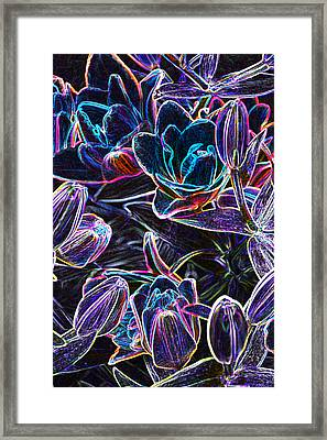 Neon Lilies Framed Print