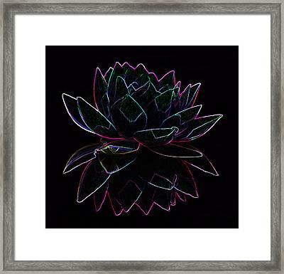 Neon Water Lily Framed Print