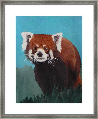 Nepalese Forest Dweller Framed Print by Margaret Saheed