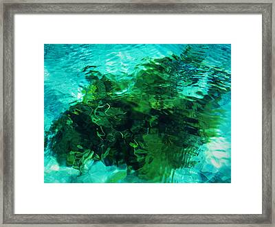 Neptune's Shadow Framed Print by Kim Lessel