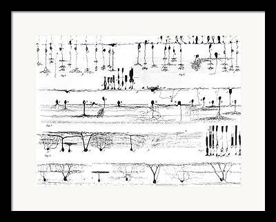 Retina Framed Prints
