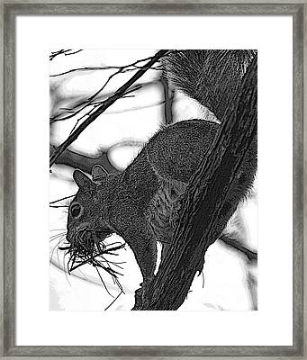Nest Bedding Framed Print by D Wallace
