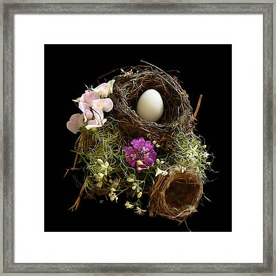 Nest Egg Framed Print by Barbara St Jean