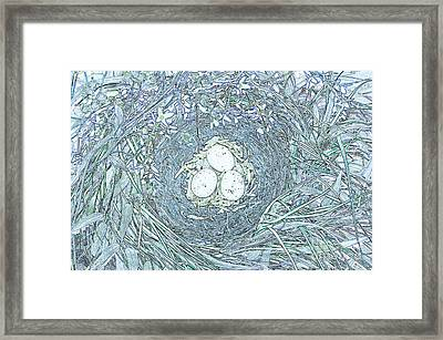 Nest Eggs By Jrr Framed Print by First Star Art