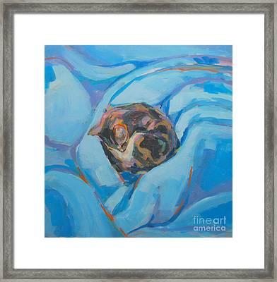 Nest Framed Print
